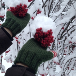 christmas-stories-mittens-4